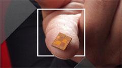 Steamroller e Jaguar: le CPU di AMD per il 2013