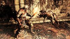 Dark Souls 2: ecco com'è su PC