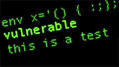 Shellshock, una vulnerabilità che può mettere in ginocchio il web