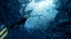 Abzu è una suggestiva esperienza sensoriale del mondo marino