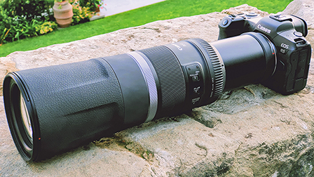 Canon EOS R5 e Canon RF 800mm F11 IS STM: primo contatto dell'accoppiata da paparazzi amatoriali
