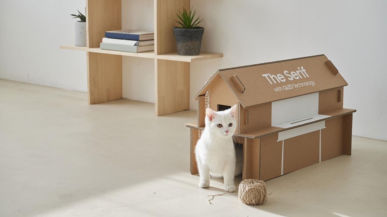 Costruire Cuccia Per Gatti una casetta per il gatto dalla confezione delle tv, l'idea