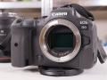 Canon EOS R6: DNA da sportiva