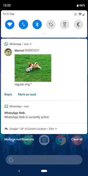 WhatsApp: già in funzione la novità che porta Android 9.0 Pie nei messaggi