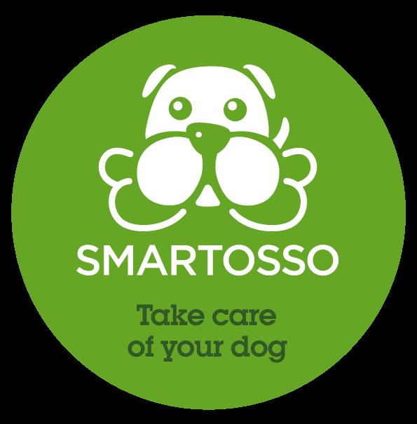 Logo Smartosso