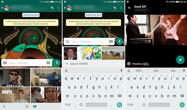 Whatsapp: nuova ricerca GIF e limite media condivisi alzato fino a 30