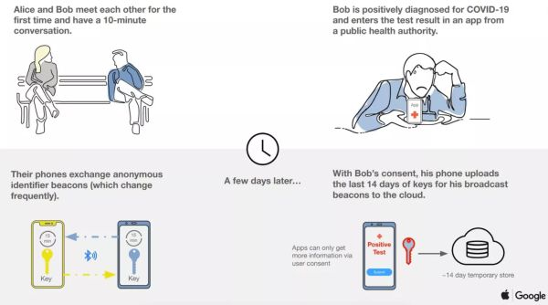 Usa, Apple e Google insieme contro il Covid-19: tracceranno il contagio