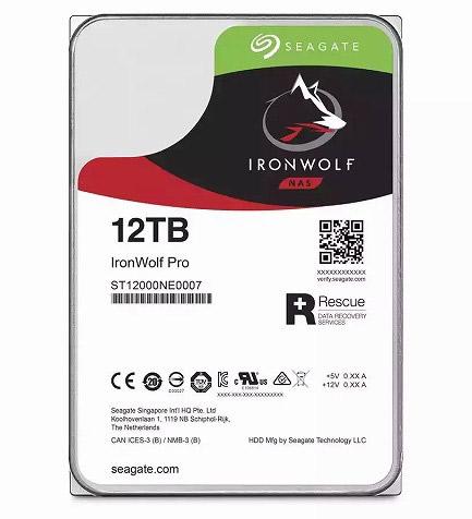 Seagate Ironwolf Pro 12GB