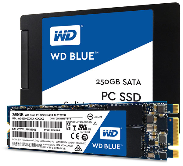 Western Digital: new entry del mercato vendite SSD